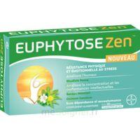 Euphytosezen Comprimés B/30 à FONTENAY-TRESIGNY