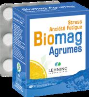 Lehning Biomag Comprimés à Croquer Agrumes B/90 à FONTENAY-TRESIGNY