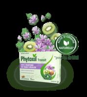 Phytoxil Transit Comprimés B/20 à FONTENAY-TRESIGNY