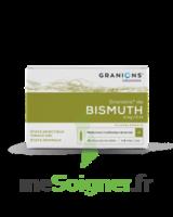 Granions De Bismuth 2 Mg/2 Ml S Buv 10amp/2ml à FONTENAY-TRESIGNY