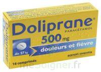 Doliprane 500 Mg Comprimés 2plq/8 (16) à FONTENAY-TRESIGNY