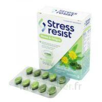 Stress Resist Comprimés Stress & Fatigue B/30 à FONTENAY-TRESIGNY