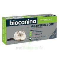 Biocanina Multivermyx Comprimés Vermifuge Chat B/2 à FONTENAY-TRESIGNY