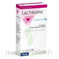 Pileje Lactibiane Cnd 5m Gél B/40 à FONTENAY-TRESIGNY