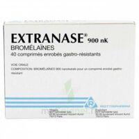 Extranase 900 Nk, Comprimé Enrobé Gastro-résistant à FONTENAY-TRESIGNY