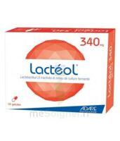 Lacteol 340 Mg, 10 Gélules à FONTENAY-TRESIGNY