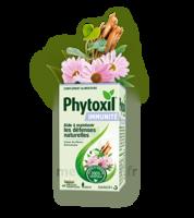 Phytoxil Immunité Gélules B/40 à FONTENAY-TRESIGNY