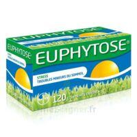 Euphytose Comprimés Enrobés B/120 à FONTENAY-TRESIGNY