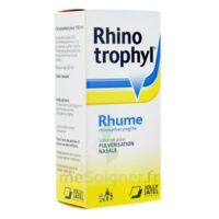 Rhinotrophyl Solution Pour Pulvérisation Nasale 1fl/12ml à FONTENAY-TRESIGNY