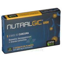 Nutralgic Comprimés Inflammations B/10 à FONTENAY-TRESIGNY