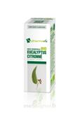 Huile Essentielle Bio Eucalyptus Citronné à FONTENAY-TRESIGNY