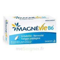 Magnevie B6 100 Mg/10 Mg Comprimés Pelliculés Plaq/60 à FONTENAY-TRESIGNY