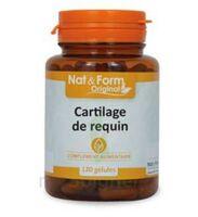 Nat&form Naturellement Cartilage De Requin Gélules B/120 à FONTENAY-TRESIGNY