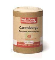Nat&form Eco Responsable Canneberge Gélules B/60