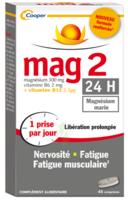 Mag 2 24h Comprimes B/45+15 Offert à FONTENAY-TRESIGNY