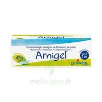 Boiron Arnigel Gel T(alumino-plastique)/45g à FONTENAY-TRESIGNY