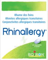 Boiron Rhinallergy Comprimés B/40 à FONTENAY-TRESIGNY
