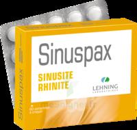 Lehning Sinuspax Comprimés à Croquer 3plq/20 à FONTENAY-TRESIGNY