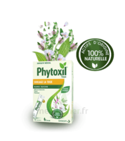 Phytoxil Toux Sans Sucre Sirop Adulte Enfant +6 Ans 12 Sachets/10ml à FONTENAY-TRESIGNY