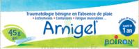 Boiron Arnigel Gel T/45g à FONTENAY-TRESIGNY