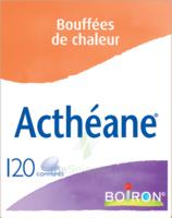 Boiron Acthéane Comprimés B/120 à FONTENAY-TRESIGNY